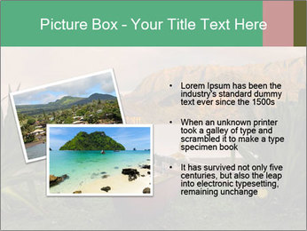 0000077988 PowerPoint Templates - Slide 20