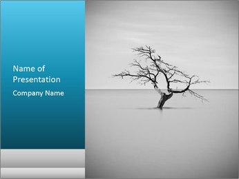 0000077994 PowerPoint Template - Slide 1