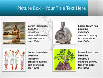 0000077994 PowerPoint Templates - Slide 14