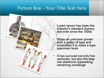 0000077994 PowerPoint Templates - Slide 17