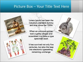0000077994 PowerPoint Template - Slide 24