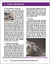 0000077995 Word Template - Page 3