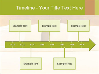 0000078005 PowerPoint Template - Slide 28