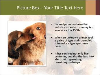0000078016 PowerPoint Templates - Slide 13