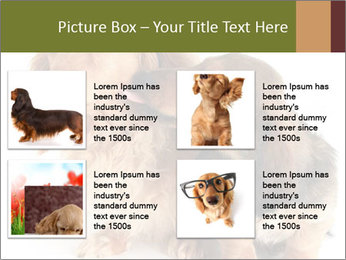 0000078016 PowerPoint Templates - Slide 14