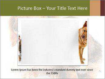 0000078016 PowerPoint Templates - Slide 15