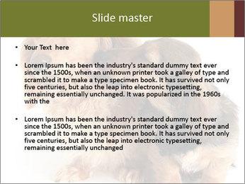 0000078016 PowerPoint Templates - Slide 2