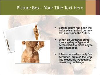 0000078016 PowerPoint Templates - Slide 20