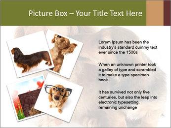 0000078016 PowerPoint Templates - Slide 23