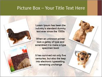 0000078016 PowerPoint Templates - Slide 24