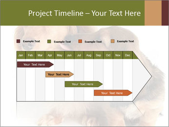 0000078016 PowerPoint Templates - Slide 25