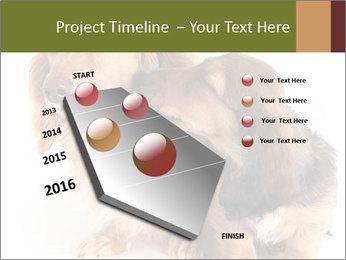 0000078016 PowerPoint Templates - Slide 26