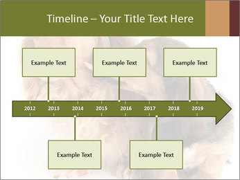 0000078016 PowerPoint Templates - Slide 28