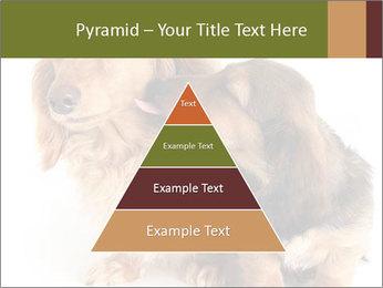 0000078016 PowerPoint Templates - Slide 30