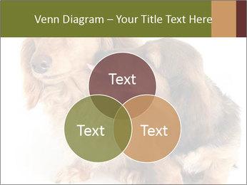 0000078016 PowerPoint Templates - Slide 33