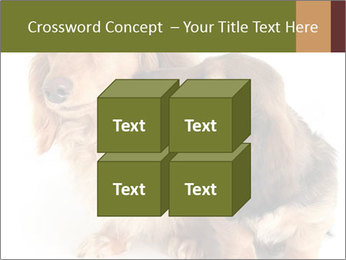 0000078016 PowerPoint Templates - Slide 39