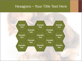 0000078016 PowerPoint Templates - Slide 44