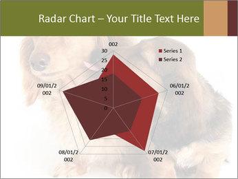 0000078016 PowerPoint Templates - Slide 51