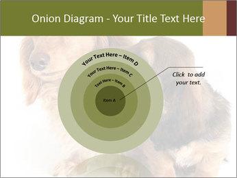 0000078016 PowerPoint Templates - Slide 61