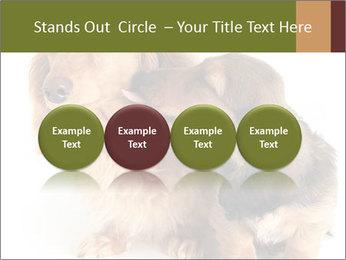 0000078016 PowerPoint Templates - Slide 76
