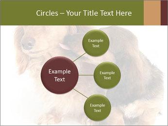 0000078016 PowerPoint Templates - Slide 79