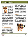 0000078016 Word Template - Page 3