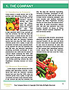 0000078020 Word Template - Page 3