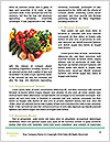 0000078020 Word Template - Page 4