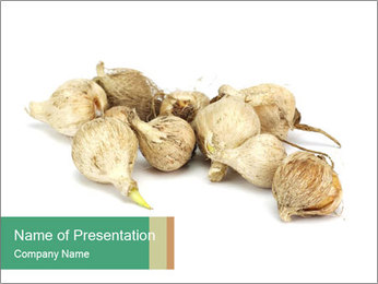 0000078030 PowerPoint Template