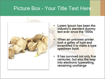 0000078030 PowerPoint Template - Slide 13