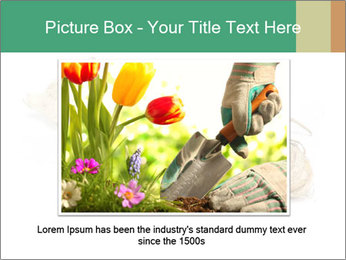 0000078030 PowerPoint Template - Slide 15