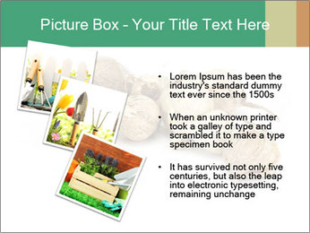 0000078030 PowerPoint Template - Slide 17