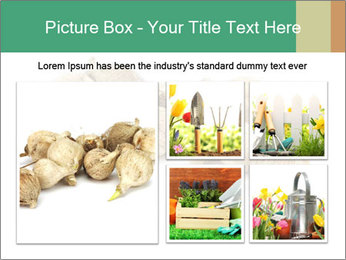 0000078030 PowerPoint Template - Slide 19