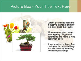 0000078030 PowerPoint Template - Slide 20