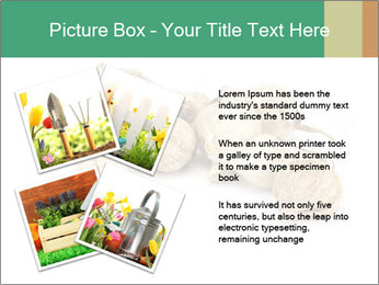 0000078030 PowerPoint Template - Slide 23