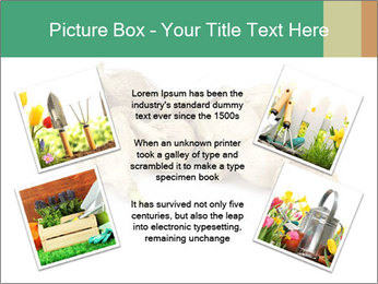 0000078030 PowerPoint Template - Slide 24