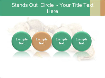 0000078030 PowerPoint Template - Slide 76