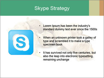 0000078030 PowerPoint Template - Slide 8