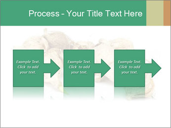 0000078030 PowerPoint Template - Slide 88