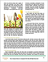 0000078030 Word Templates - Page 4