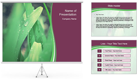 0000078033 PowerPoint Template