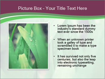 0000078033 PowerPoint Templates - Slide 13
