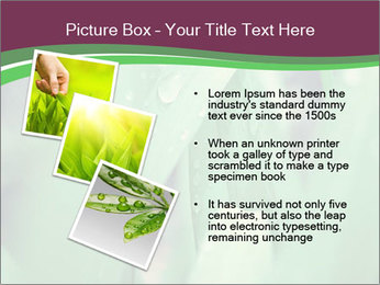 0000078033 PowerPoint Templates - Slide 17