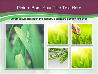 0000078033 PowerPoint Templates - Slide 19