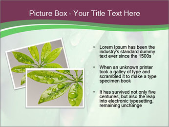 0000078033 PowerPoint Templates - Slide 20