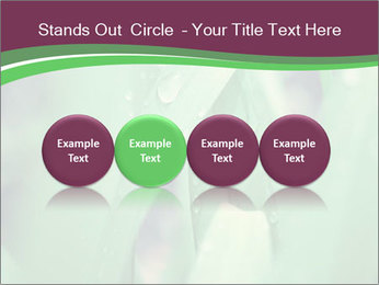 0000078033 PowerPoint Templates - Slide 76