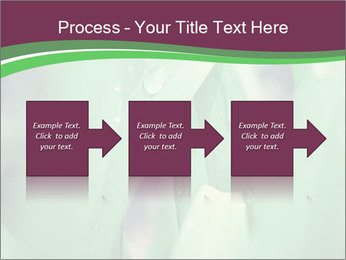 0000078033 PowerPoint Templates - Slide 88