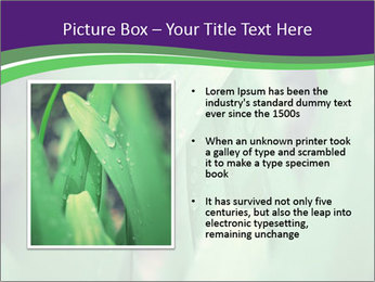 0000078034 PowerPoint Template - Slide 13