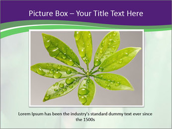 0000078034 PowerPoint Template - Slide 15