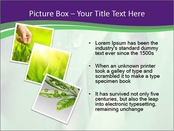 0000078034 PowerPoint Template - Slide 17